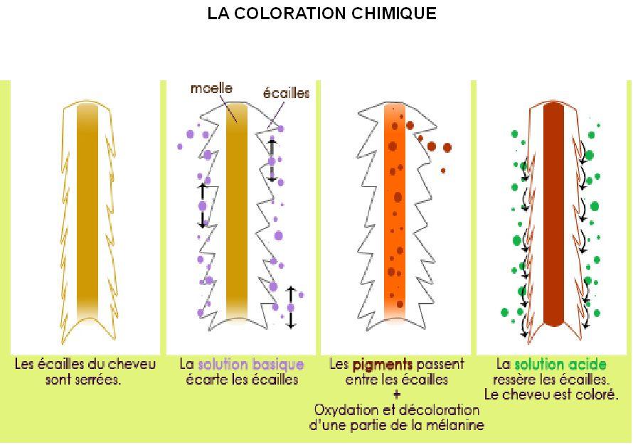 Coloration-chimique-récap