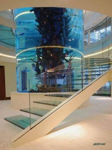 avoir un aquarium 28 images 12 aquariums incroyables 224 avoir chez soi astuces de filles. Black Bedroom Furniture Sets. Home Design Ideas