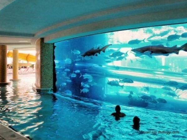 12 aquariums incroyables avoir chez soi astuces de for Petit aquarium original