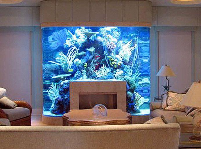 12 aquariums incroyables avoir chez soi astuces de filles page 3. Black Bedroom Furniture Sets. Home Design Ideas
