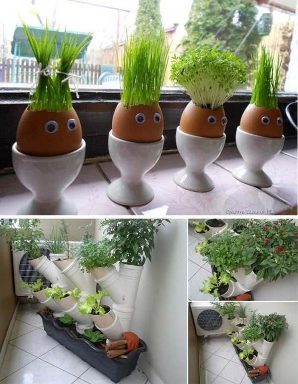 Mini-Indoor-Gardening-10
