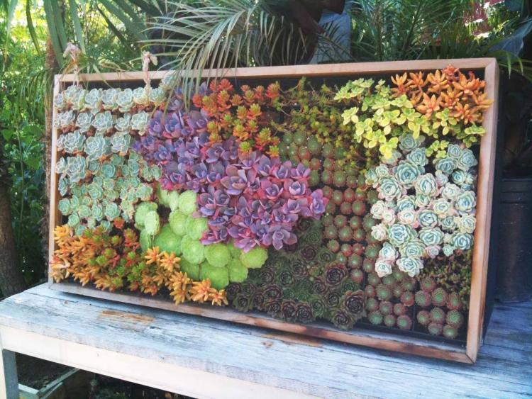 Gut gemocht 6 murs végétaux superbes et très tendances | Astuces de filles UL04